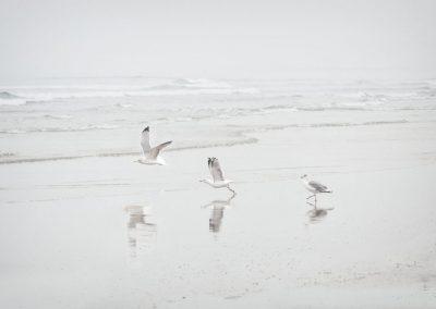 Bretagne Winter11